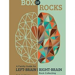 Photo of Box of Rocks Book Cover