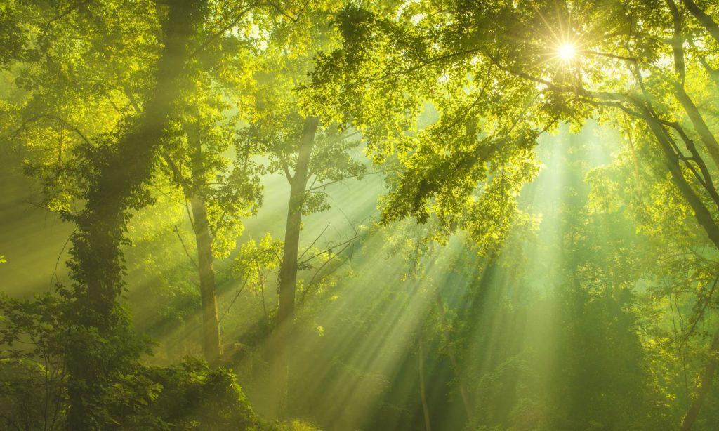 Akashic Records Beam of Light Photo